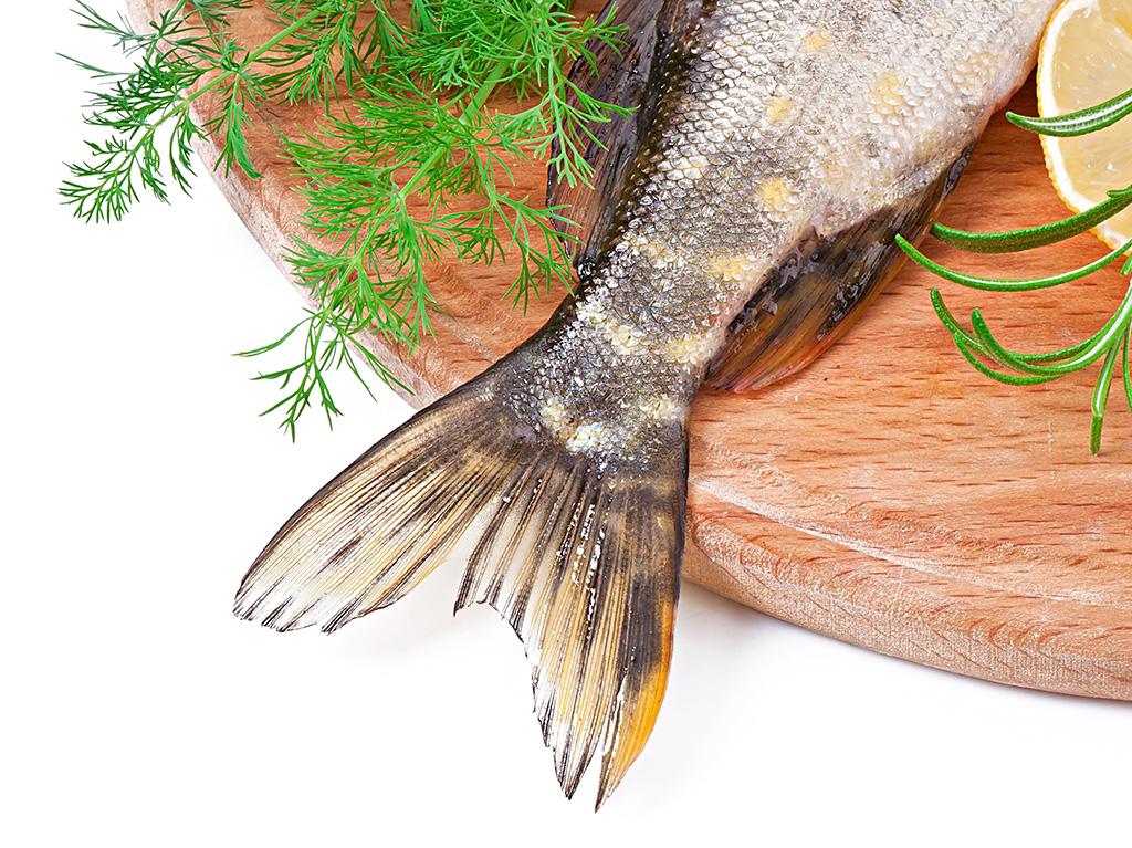 cola de pescado